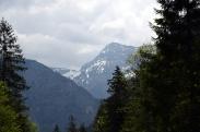 Am Plansee Austria02