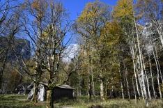 Kinigssee_Haus01