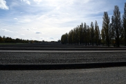 Konzentrationslager Dachau12