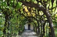 Schloss Dachau57